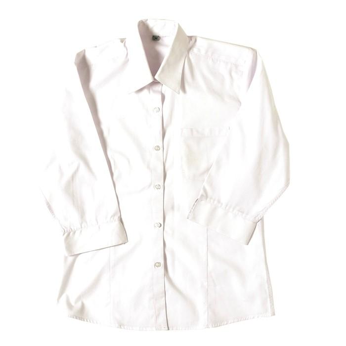 7fdbb370 Girls 3/4 Sleeve Revere Collar School Blouse - School Uniform 247 | Girls  School Uniform | White | Sky Blue